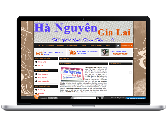Hanguyengialai.com